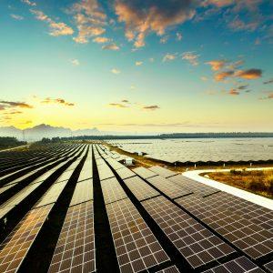 Modulos fotovoltaicos em estrutura de solo em uma fazenda solar